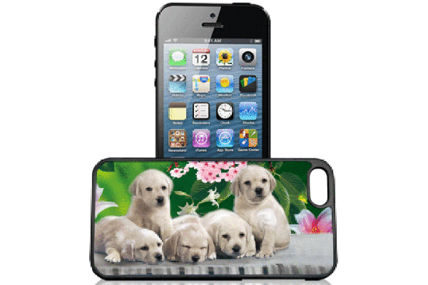 Bridge94 iPhone 5/5S/SE 3D-Back-Cover, Hunde-Welpen